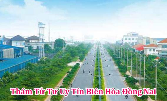 Thám tử tư ở Biên Hòa tỉnh Đồng Nai