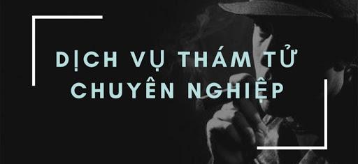 Hiệp hội thám tử Việt Nam